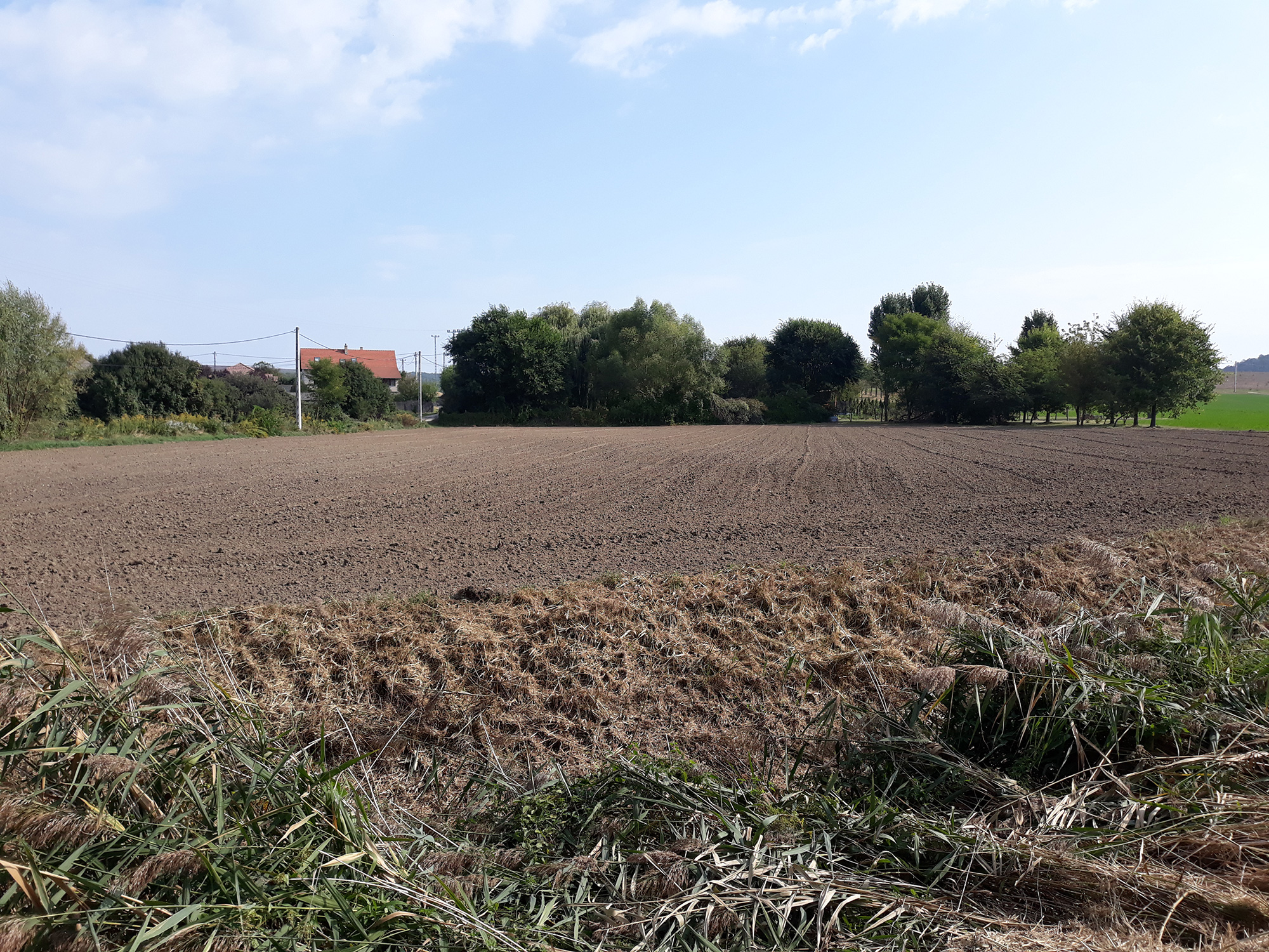Eladó 1 hektáros telek Váchartyán - alsó szántóföldi rész